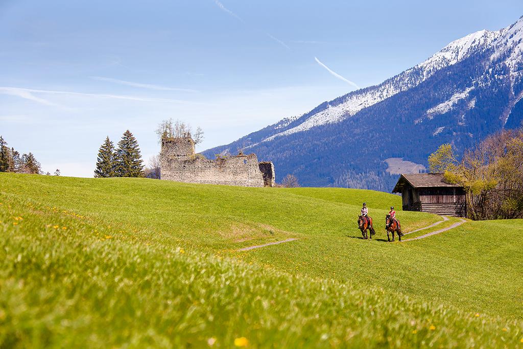 Appartement de vacances 4-7 Pers. (618464), Neukirchen am Großvenediger, Pinzgau, Salzbourg, Autriche, image 17