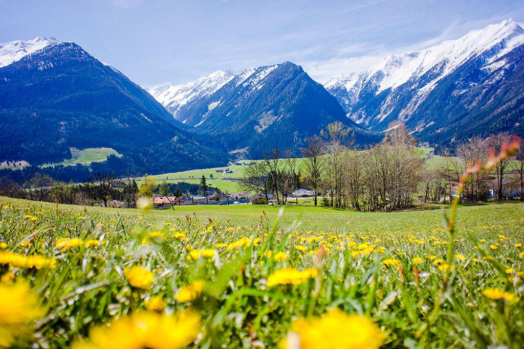 Appartement de vacances 4-7 Pers. (618469), Neukirchen am Großvenediger, Pinzgau, Salzbourg, Autriche, image 19