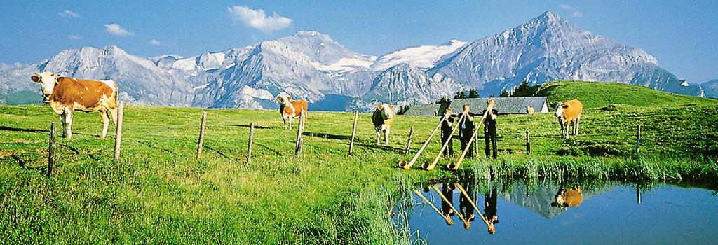 Ferienwohnung Chaletwohnung 2-3 Pers. (332241), Zweisimmen, Simmental, Berner Oberland, Schweiz, Bild 6