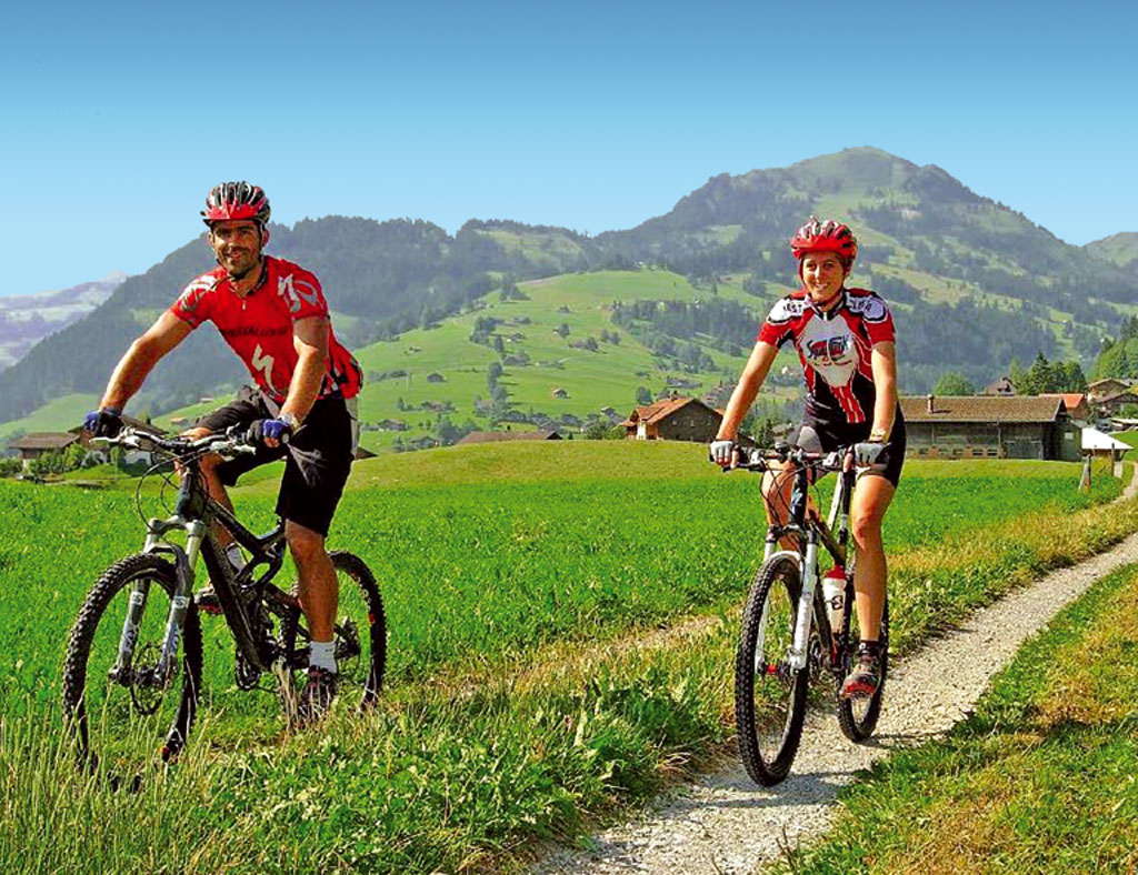 Ferienwohnung Chaletwohnung 2-3 Pers. (332241), Zweisimmen, Simmental, Berner Oberland, Schweiz, Bild 5