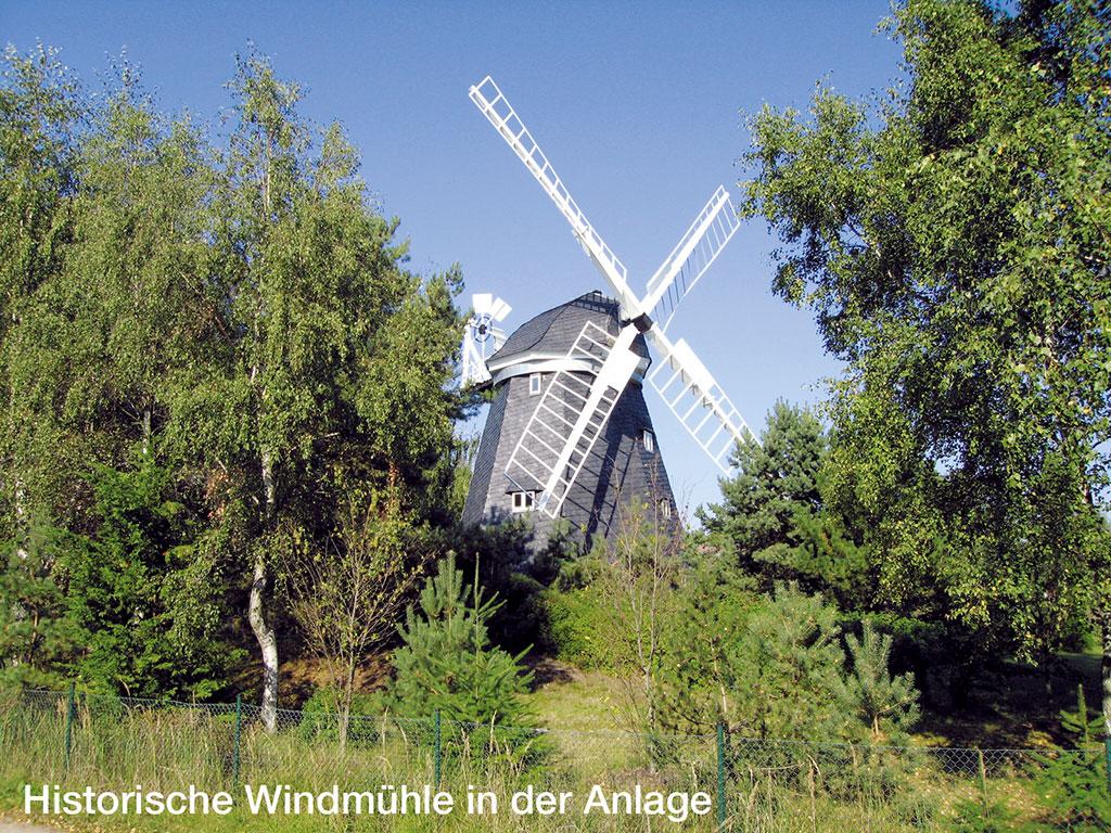 Ferienwohnung 2 Pers. (146709), Trassenheide, Usedom, Mecklenburg-Vorpommern, Deutschland, Bild 8