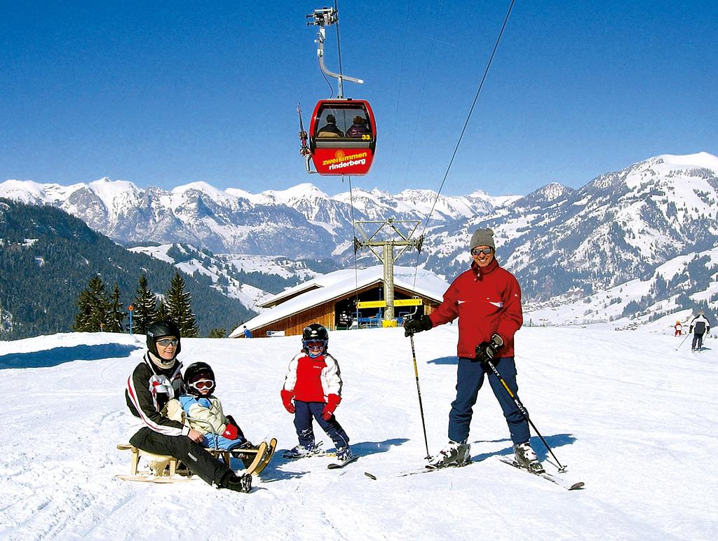 Ferienwohnung 2-3 Pers. (2636770), Zweisimmen, Simmental, Berner Oberland, Schweiz, Bild 13