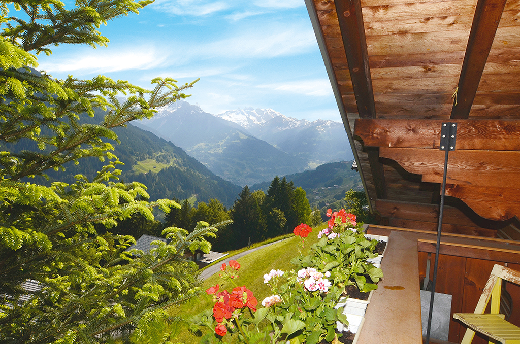 Ferienhaus Bauernhaus 8-12 Pers. (2178822), Schruns, Montafon, Vorarlberg, Österreich, Bild 11