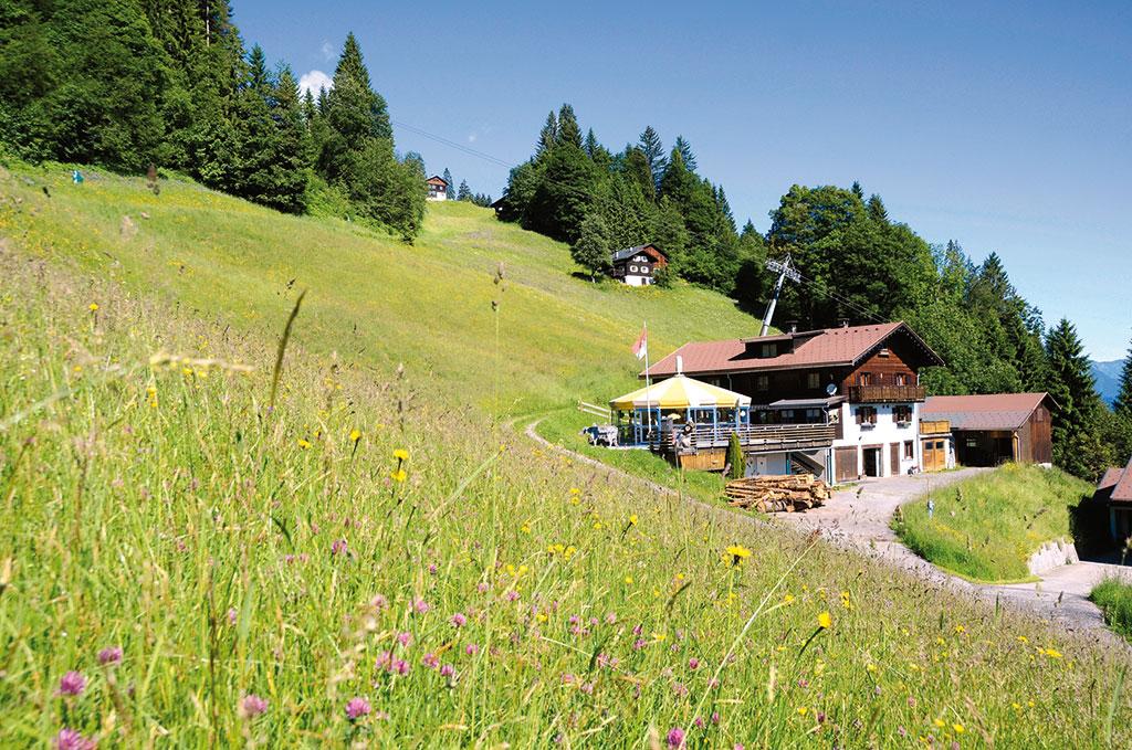 Holiday house Bauernhaus 6-10 Pers. (1950793), Tschagguns, Montafon, Vorarlberg, Austria, picture 1
