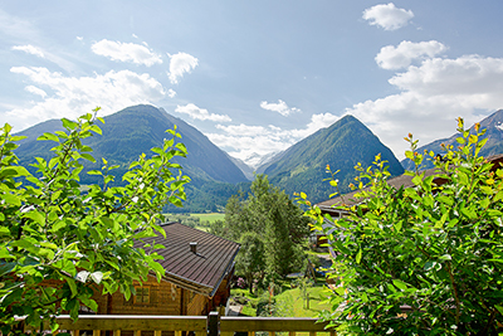 Appartement de vacances 4-7 Pers. (618469), Neukirchen am Großvenediger, Pinzgau, Salzbourg, Autriche, image 15