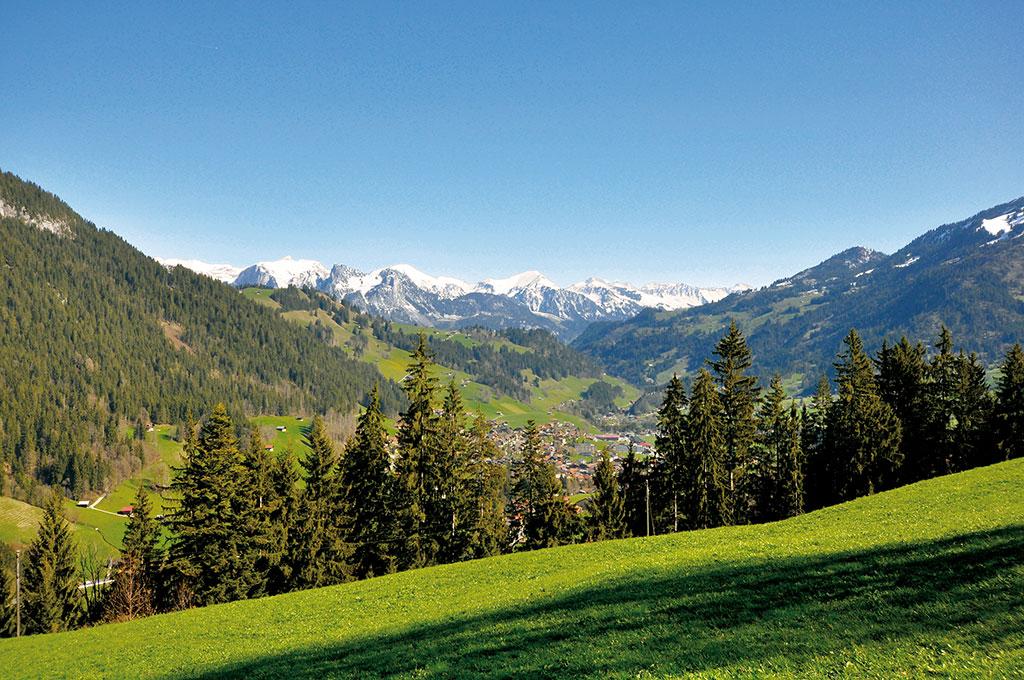 Ferienwohnung Chaletwohnung 3-7 Pers. (332073), Zweisimmen, Simmental, Berner Oberland, Schweiz, Bild 18
