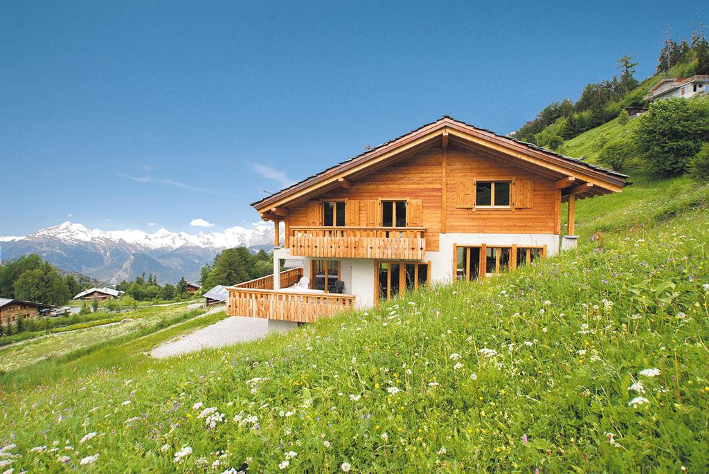 Ferienhaus Chalet 4-10 Pers. (332262), Haute-Nendaz, 4 Vallées, Wallis, Schweiz, Bild 14