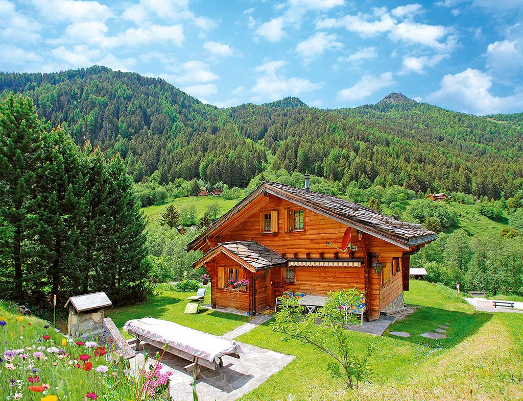 Ferienhaus Chalet 4-10 Pers. (1631422), Haute-Nendaz, 4 Vallées, Wallis, Schweiz, Bild 1