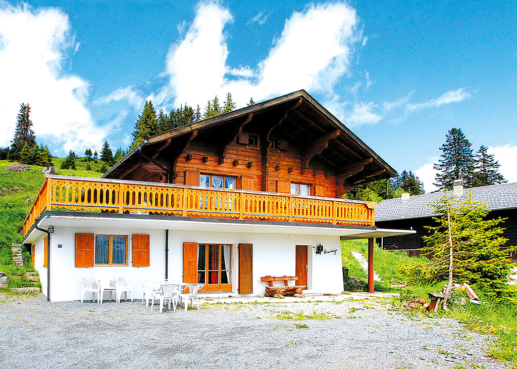 Holiday house Chalet 3-6 Pers. (419081), Les Crosets, Val d'Illiez, Valais, Switzerland, picture 1