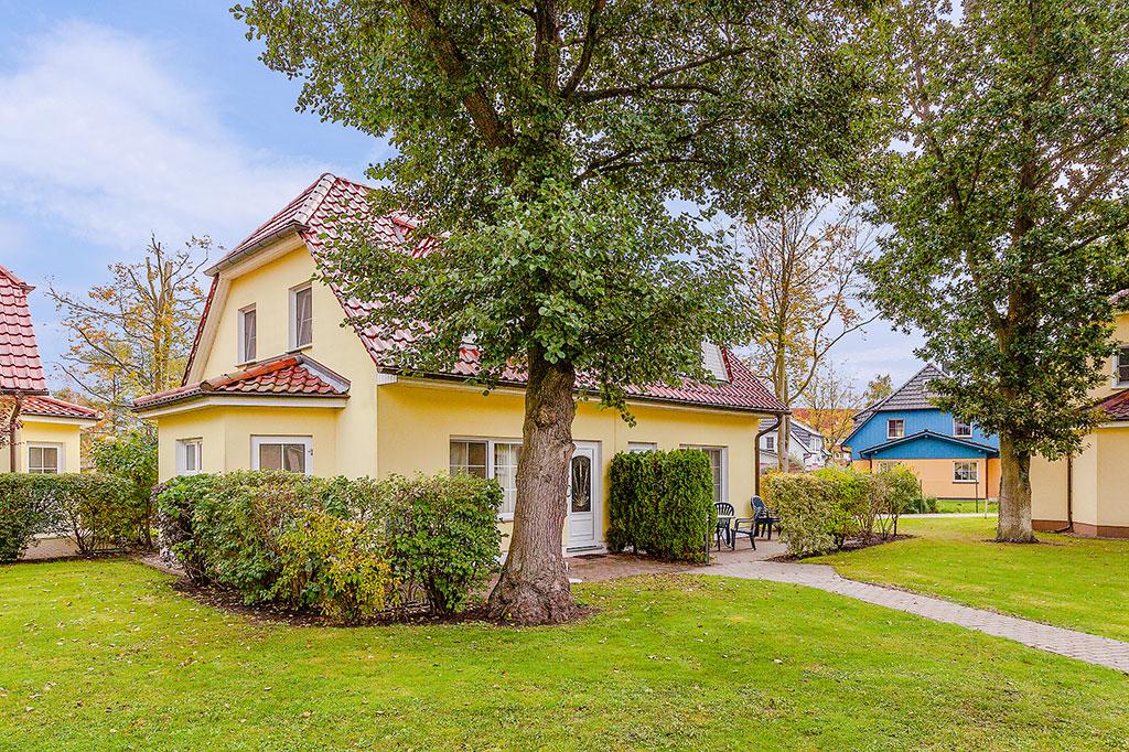 Ferienhaus 2-4 Pers. (214329), Zingst, Fischland-Darss-Zingst, Mecklenburg-Vorpommern, Deutschland, Bild 8