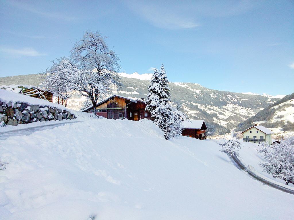 Holiday house Bauernhaus 4-10 Pers. (2435470), Tschagguns, Montafon, Vorarlberg, Austria, picture 14