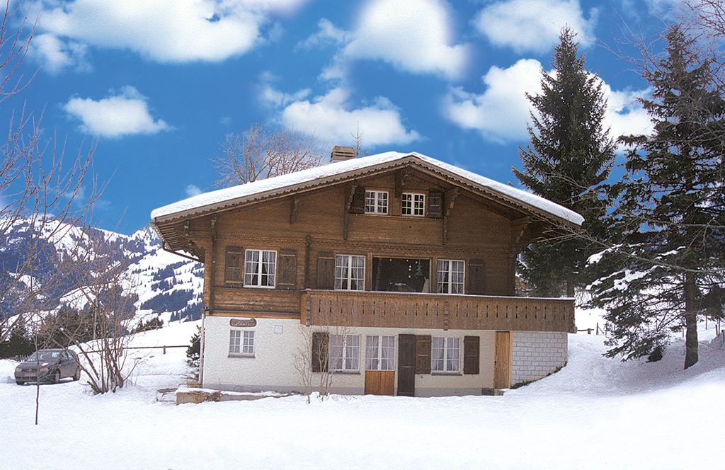 Ferienwohnung 2-3 Pers. (2636770), Zweisimmen, Simmental, Berner Oberland, Schweiz, Bild 11
