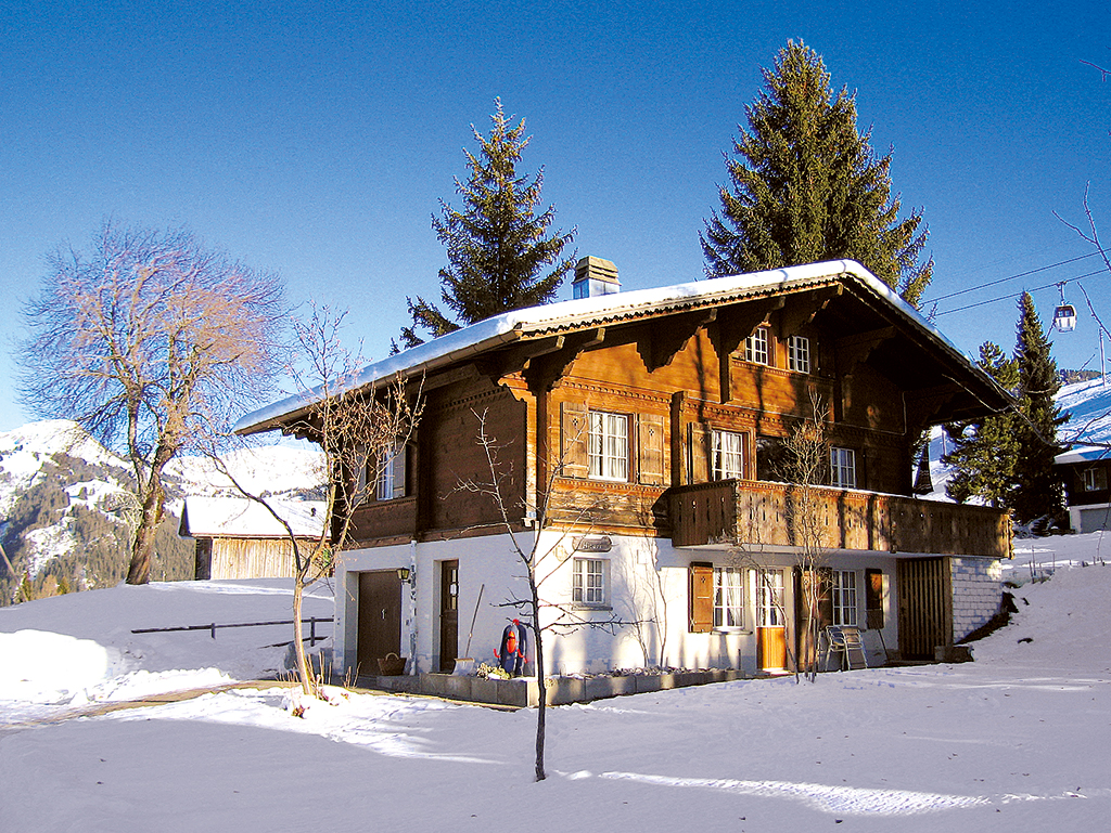 Ferienwohnung 2-3 Pers. (2636770), Zweisimmen, Simmental, Berner Oberland, Schweiz, Bild 9