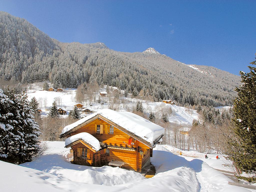 Maison de vacances Chalet 8-10 Pers. (146612), Haute-Nendaz, 4 Vallées, Valais, Suisse, image 2