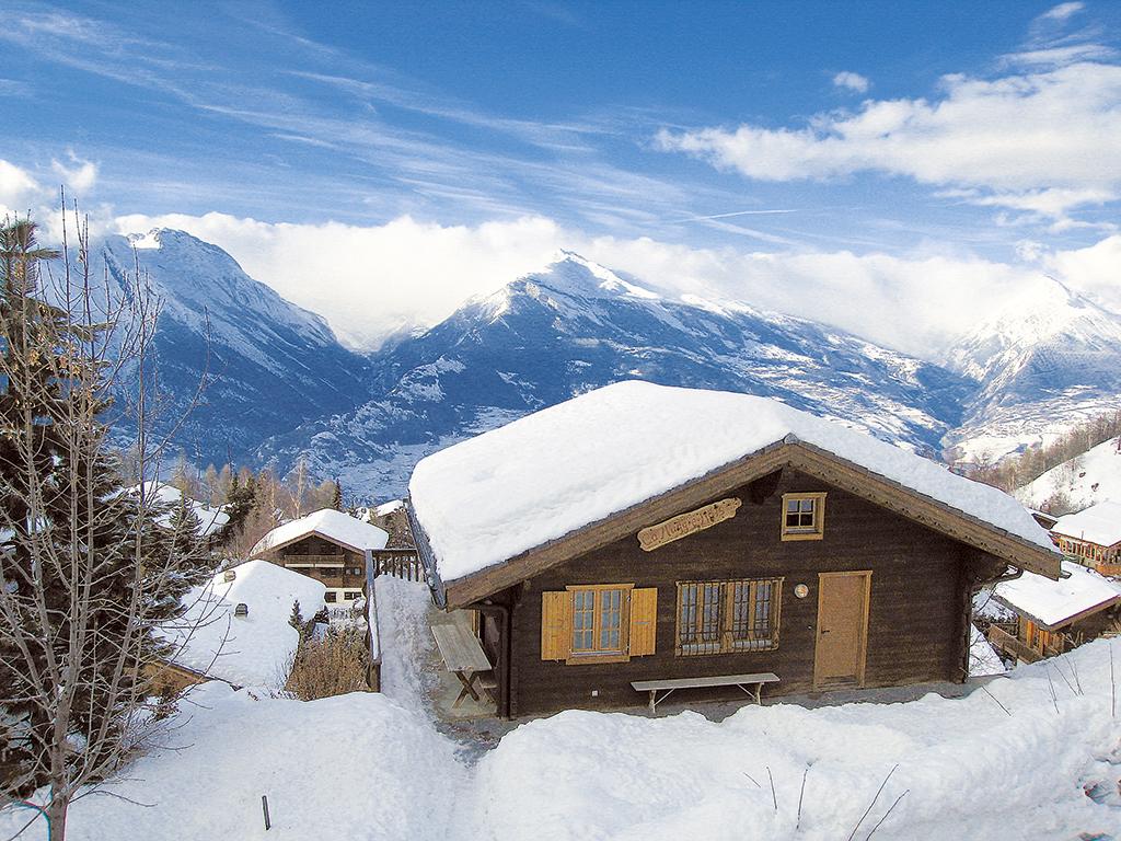 Ferienhaus Chalet 6-8 Pers. (146615), Haute-Nendaz, 4 Vallées, Wallis, Schweiz, Bild 12