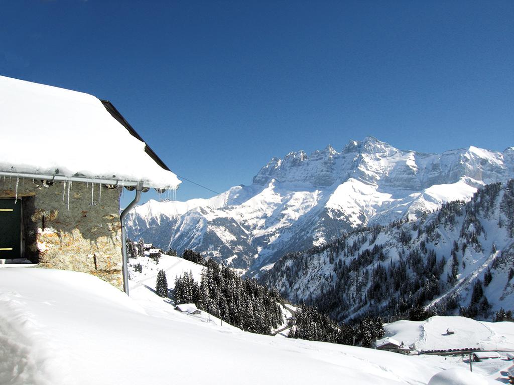 Ferienhaus Skihütte 8-10 Pers. (316991), Les Crosets, Val d'Illiez, Wallis, Schweiz, Bild 9