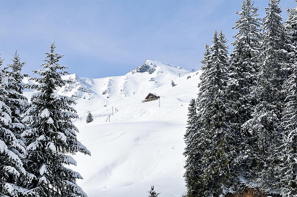 Ferienhaus Skihütte 8-10 Pers. (316991), Les Crosets, Val d'Illiez, Wallis, Schweiz, Bild 11