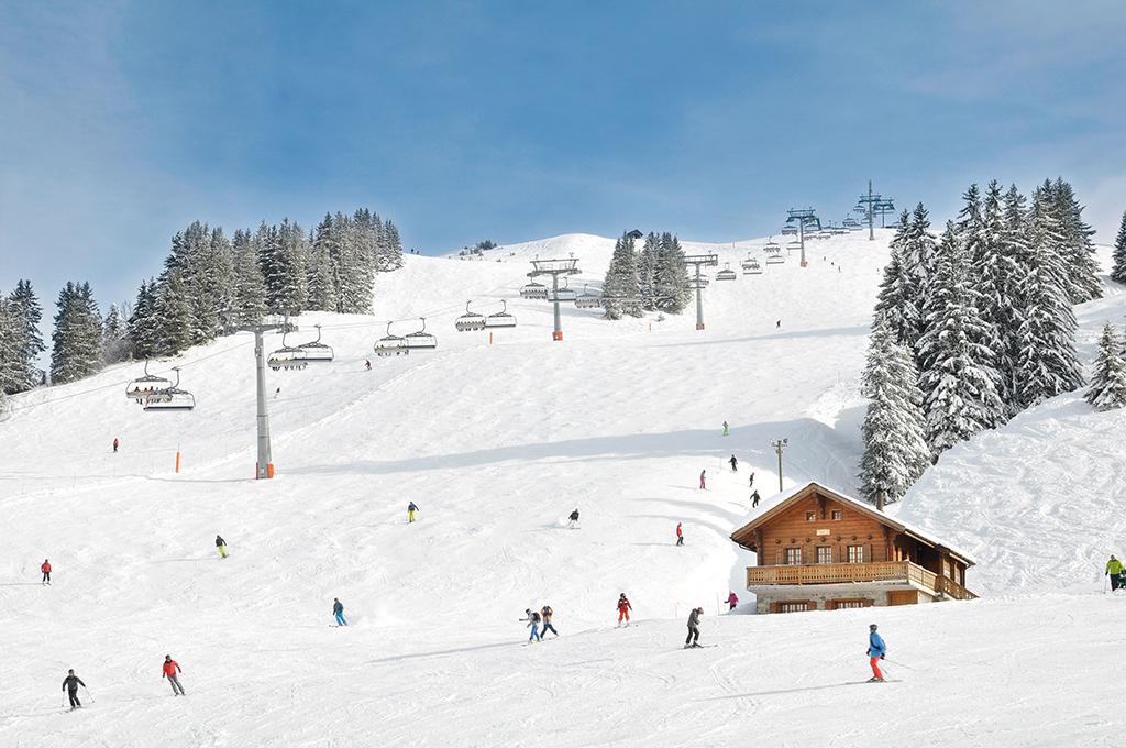 Ferienhaus Skihütte 4-8 Pers. (834947), Les Crosets, Val d'Illiez, Wallis, Schweiz, Bild 14