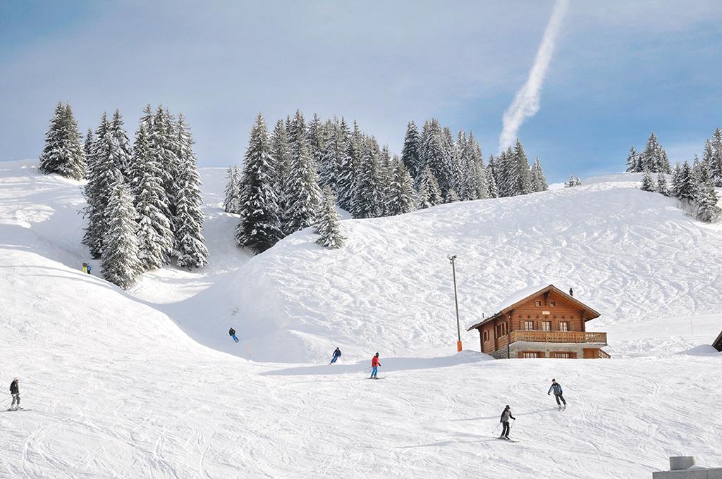 Ferienhaus Skihütte 4-8 Pers. (834947), Les Crosets, Val d'Illiez, Wallis, Schweiz, Bild 2