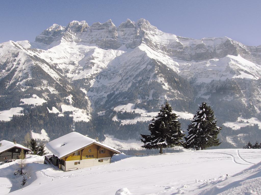 Ferienhaus Chalet 8-14 Pers. (146649), Les Crosets, Val d'Illiez, Wallis, Schweiz, Bild 20