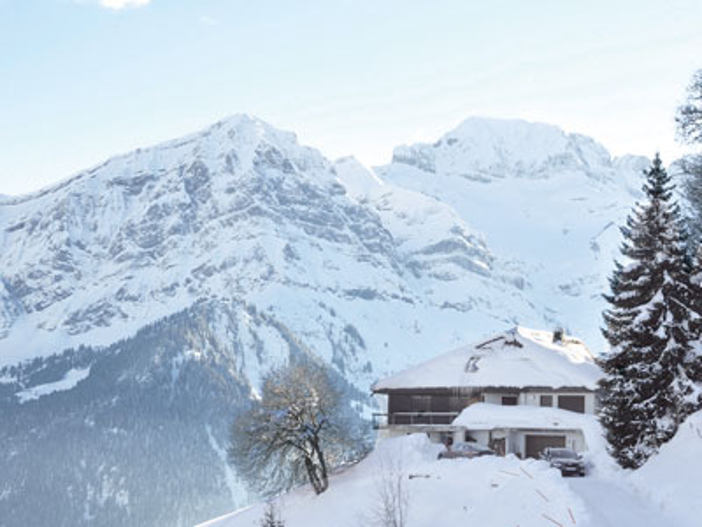 Ferienhaus 6-9 Pers. (495593), Les Crosets, Val d'Illiez, Wallis, Schweiz, Bild 17
