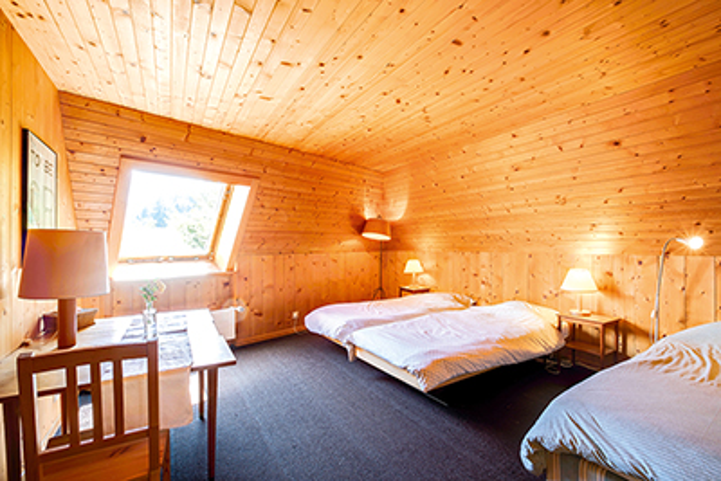 Ferienhaus 6-9 Pers. (495593), Les Crosets, Val d'Illiez, Wallis, Schweiz, Bild 10